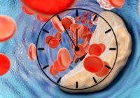 Cholesterol w chronobiologii